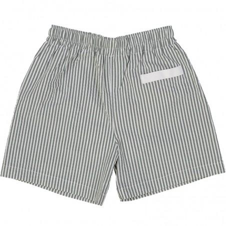 Pine Green seersucker swim shorts for boys